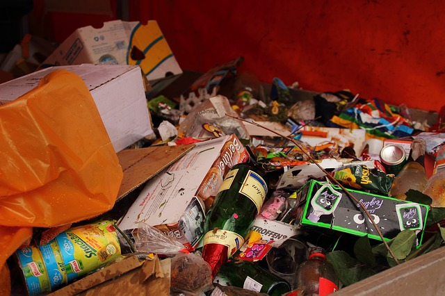 Eko-logis: kontenery na odpady we Wrocławiu